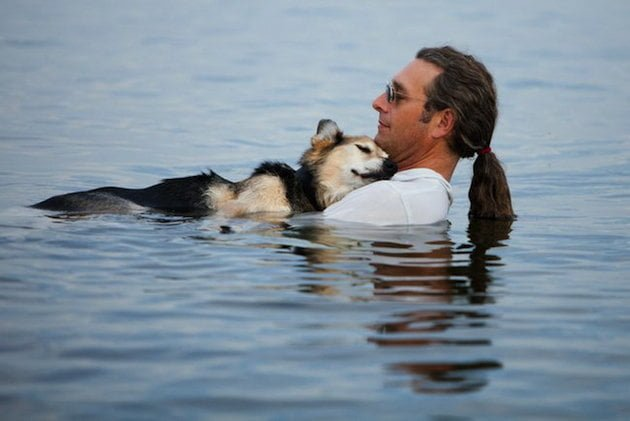 La photo d'un chien et de son maître crée un incroyable engouement sur Facebook