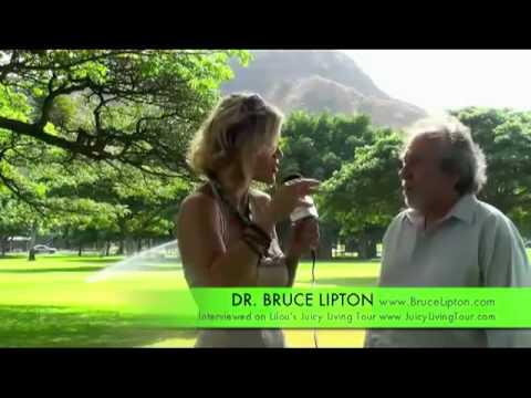 R-évolution de l'évolution et émergence des créatifs culturels-Dr Bruce Lipton
