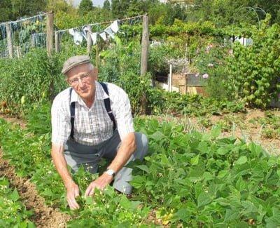 Rien ne remplacera la jardin de  » Papy  » à la campagne, mais l'idée de redonner un sens à la ville est très tendance.