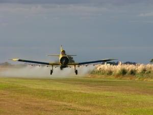 Des producteurs de soja argentins sont accusés d'épandage illégal de pesticides. © santiagonicolau
